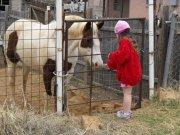Kucyk i dziewczynka